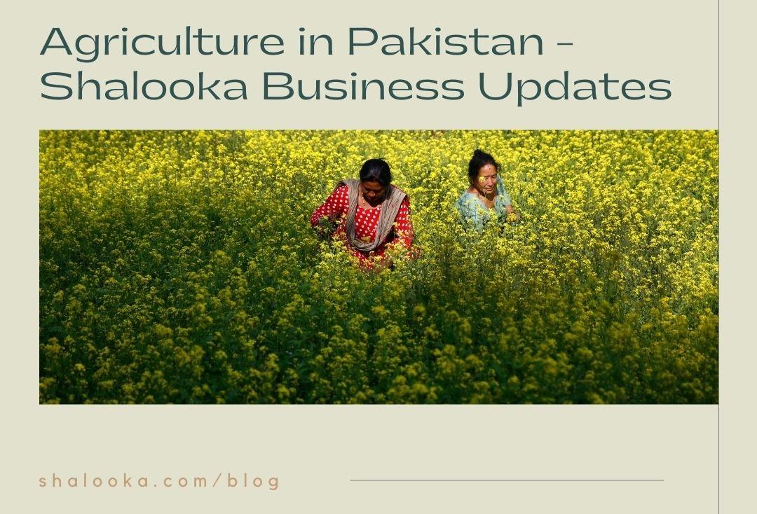 pesticides pakistan
